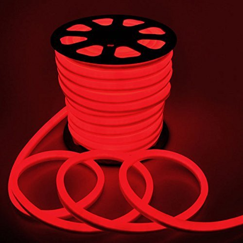 DELight 150ft 110 Volts Red Power Electric Flexible LED Neon Tube Rope Light for Indoor Outdoor Holiday Decoration Valentines Party Lighting by Generic