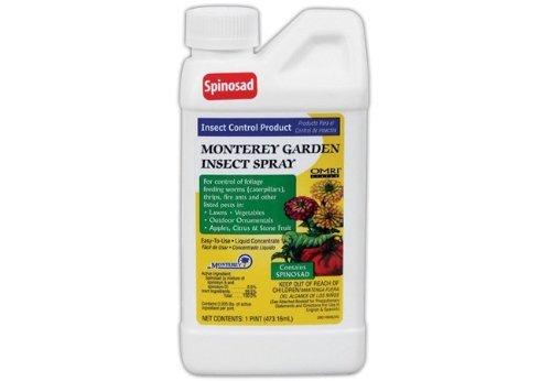Garden insect spray w spinosad pint 12cs growing dank Monterey garden insect spray with spinosad