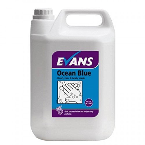 Evans Vanodine Ocean Blue Revitalising Moisturising Cleansing Hand, Hair and Body Wash Lather Liquid Soap 5ltr by Evans Vanodine (Revitalising Wash)