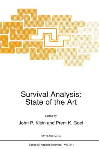Survival Analysis: State of the Art (Nato Science Series E:) Text fb2 ebook