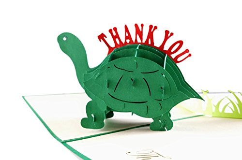 iGifts And Cards Cute Turtle Thank You 3D Pop Up Greeting Card - Funny Animals, Turquoise, Blank, Cool, Fun, Half-Fold, Thank You, Gratitude, Appreciation, Friendship, Best Friend, Belated, Kids, Grad