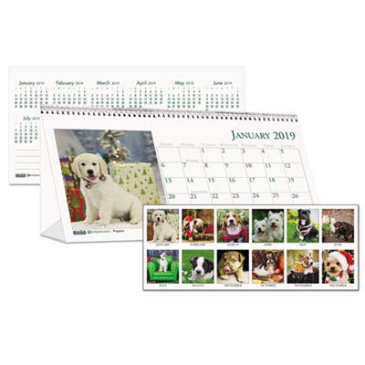 Earthscapes Puppies Wall Calendar - House of Doolittle Earthscapes Puppy Desk Top Tent Calendar 12 Months January 2015 to December 2015, 8.5 x 4.25 Inches, Color Photo, Recycled (HOD3659)
