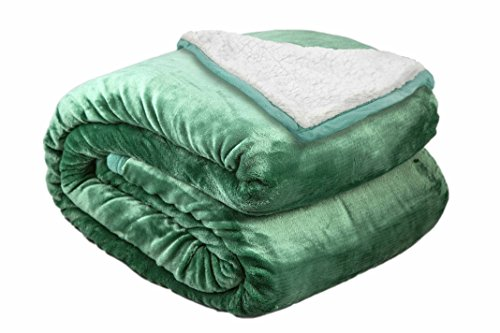 (Archangel 2 Ply Microfiber Velvet Silky Soft Sherpa Borrego Reversible Solid Blanket Hunter Green 90