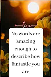 No words are amazing enough to describe how fantastic you are : Valentines Day Gift Ideas, Diary notebook, Journal: Notebook Journal, Notepad, or ... your daily Notes, valentines day quotes