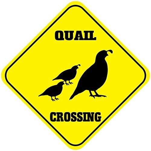 Liz66Ward Quail Aluminum Corssing Sign Caution Signs Funny Metal Animal Crossing Wall Art Decor 12x12 Novelty Gifts Sign