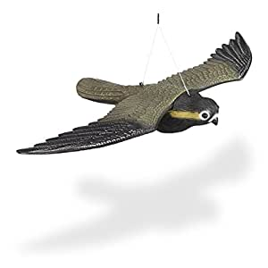 Relaxdays Falcon Bird Repellent, Flying Bird of Prey Decoy Scarecrow, Life Sized, Multicolor