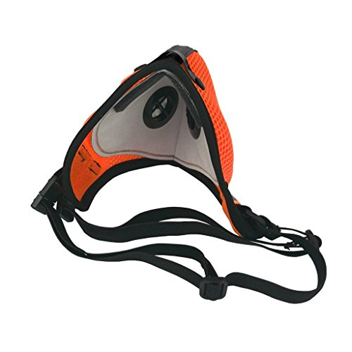 RZ Dust/Pollution Mask Bonus Pack w/5 Laboratory Tested Filters, Model M2.5, Mesh, Safety Orange, Size Large by RZ Mask