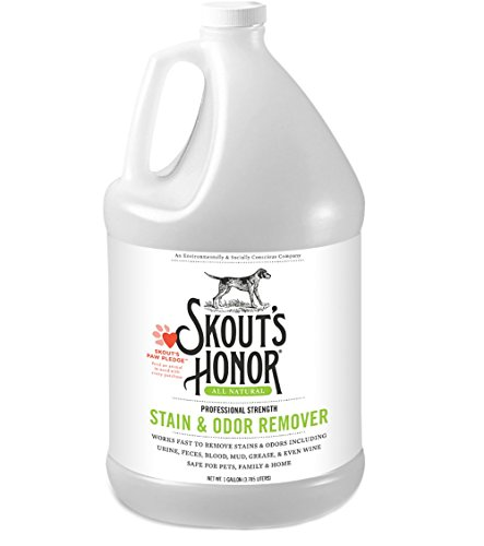 equalizer stain remover - 9