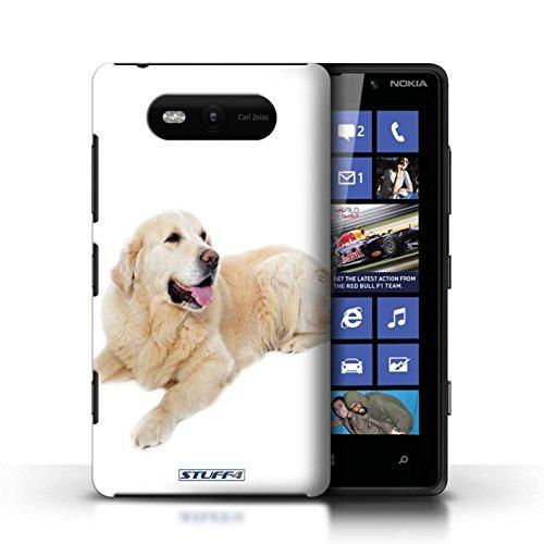 Etui / Coque pour Nokia Lumia 820 / Labrador conception / Collection de Chiens