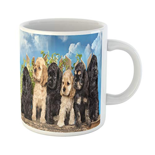 - Semtomn Funny Coffee Mug Brown Puppy Family American Cocker Spaniel Dogs Funny Litter 11 Oz Ceramic Coffee Mugs Tea Cup Best Gift Or Souvenir