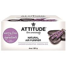 ATTITUDE, Natural Air Purifier, Lavender / Eucalyptus Essential Oils, 8 oz (227 g)