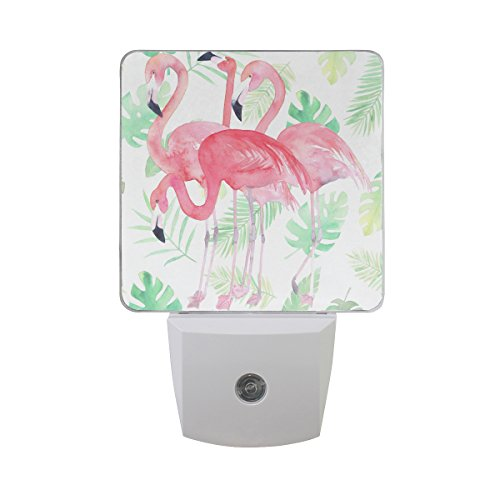 - ALAZA 2 Pack Watercolor Green Palm Leaf Pink Flamingo Bird LED Night Light Dusk to Dawn Sensor Plug in Night Home Decor Desk Lamp for Adult