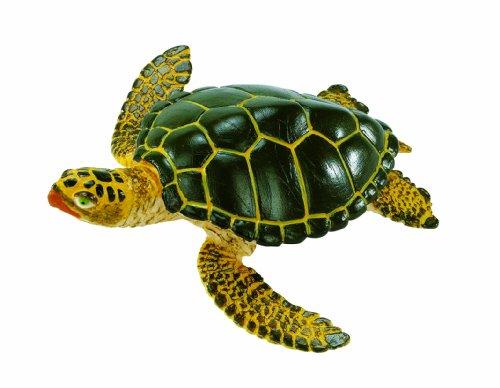 Safari Ltd  Wild Safari Sea Life Green Sea Turtle