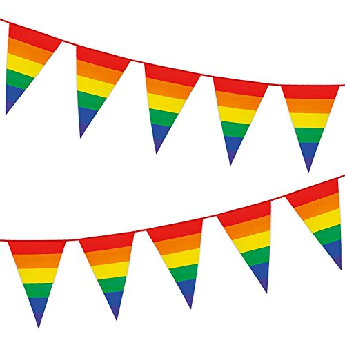 Gay Pride Flag Rainbow Colored String Pennant Flags LGBT Banner 33ft Party Decoration (M1006)]()