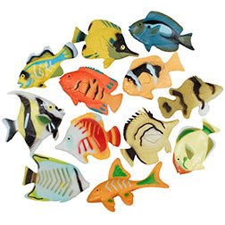 (Tropical Fish Assortment 2-1/4 Inch )