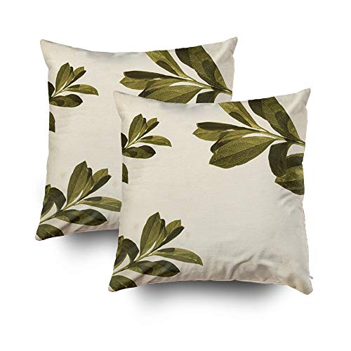 Capsceoll Christmas 2PCS Olive Decorative Throw Pillow Case 18X18Inch,Home Decoration Pillowcase Zippered Pillow Covers Cushion Cover with Words for Book Lover Worm Sofa Couch