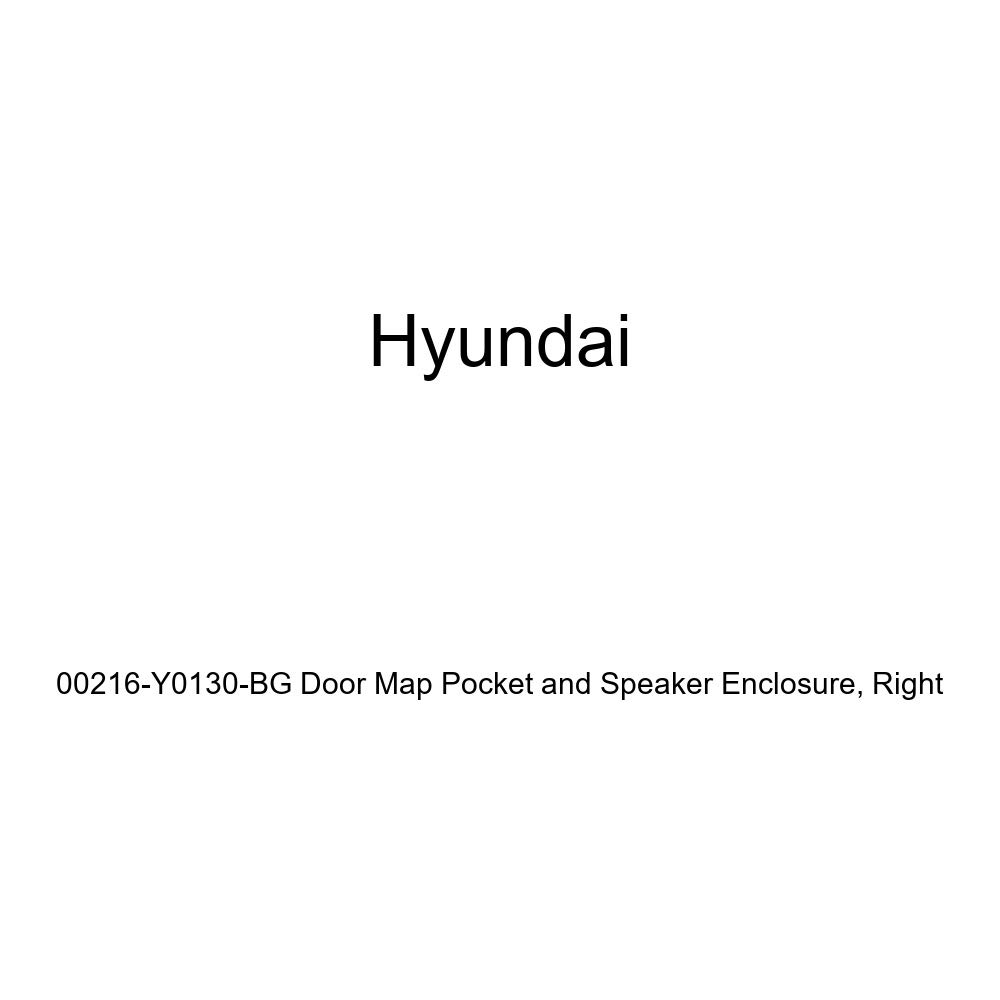 Right Genuine Hyundai 00216-Y0130-BG Door Map Pocket and Speaker Enclosure