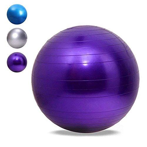 ROHSCE Pelota de Ejercicio, 65 cm, PVC, Gimnasio, Suiza, Yoga para Pilates/Fitness/Balance/Core Stability Training/Terapia...