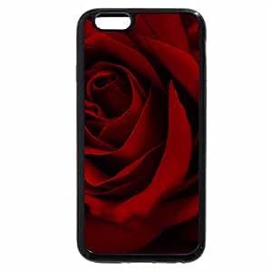 iPhone 6S / iPhone 6 Case (Black) Rose