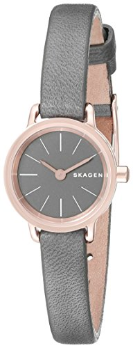 스카겐 시계 SKW2359 Skagen Womens SKW2359 Hagen Gold-Tone Bracelet Watch