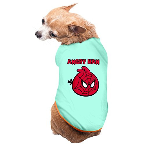 jade-funniest-spider-web-with-brid-mixed-poster-pet-doggie-outfit-skyblue-size-l