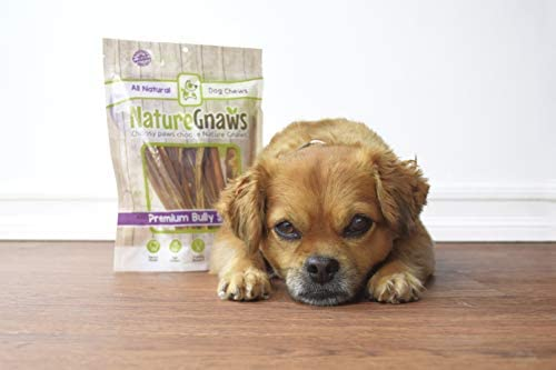 Nature Gnaws Extra Thin Bully Sticks for Dogs - Premium Natural Beef Bones - Long Lasting Dog Chew Treats for Small Dogs & Puppies - Rawhide Free - 6 Inch (10 Count)