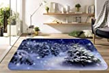 H40cm x W60cm 3D White Snow 5 Non Slip Rug Mat Room Mat Quality Elegant Photo Carpet