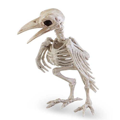 thitiwat Halloween Crazy Bone Skeleton Raven 100% Plastic Animal Skeleton Bones Horror Halloween Prop Bird Crow Skeleton Decoration