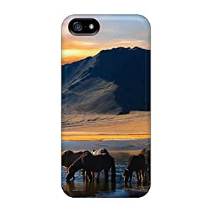 Anti-scratch And Shatterproof Free Beautiful Landscape Desktop 06 2010 90 Phone Case For Iphone 5/5s/ High Quality Tpu Case