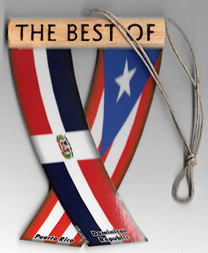 (UNITY FLAGZ Puerto RICO and Dominican Republic, PR and DR Flag Boricua Dominican Flag, Caribbean Rear View Mirror Hanging CAR Flags Mini Banners for Inside The CAR)