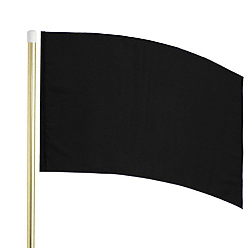 Director's Showcase 6' Gold Flag Pole and Color Guard Flag Package (Black)