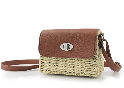 (Vintage Straw Basket Case Cross Body Bag Womens Small Vacation Purse (Beige))