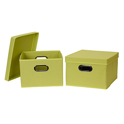 Household Essentials 10KDLM Collapsible Fabric Storage Box with Lid, 2 Pack, Lime, Green