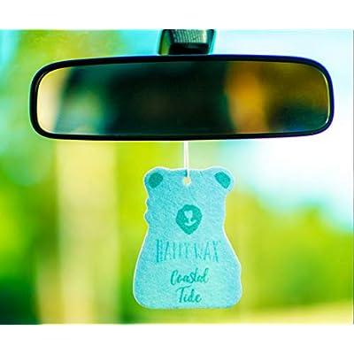 Happy Wax Scented Hanging Car Cub Air Freshener - Cute Car Freshener Infused with Natural Essential Oils! - Beach 4-Pack (Coastal Tide, Jasmine Honeysuckle, Grapefruit Mangosteen, Citron Mandarin): Automotive