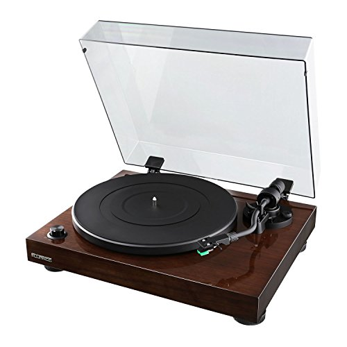 Fluance Elite High Fidelity Vinyl Turntable Record Player with Audio Technica AT95E Cartridge, Belt Drive, Built-in Preamp, Adjustable Counterweight, Solid Wood Plinth - Walnut (RT81)