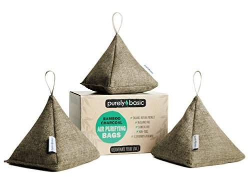 Bamboo Charcoal Air Purifying Bags :: Set of 3 All Natural Odor Eliminator Bags, 200 Grams Each :: Organic & Chemical Free for Home, Car, Garage, Pet Areas & More (Beige)