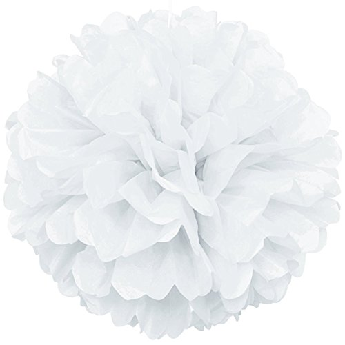 Lightingsky 10pcs DIY Decorative Tissue Paper Pom-poms Flowers Ball Perfect for Party Wedding Home Outdoor Decoration (10-inch Diameter, White) -
