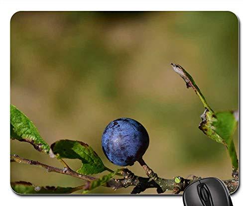 Mouse Pad - Rowan Blue Close Background Beautiful Autumn