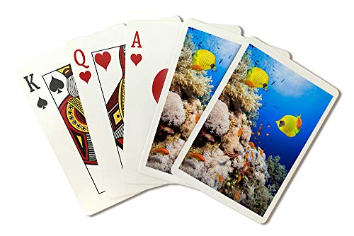 Coral Reef and Masked Butterfly Fish Photography A-91390 (Playing Card Deck - 52 Card Poker Size with Jokers) ()