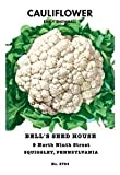 """Early Snowball Cauliflower 4 Plants - 2.5"""" Pots - Easy to Grow!"""