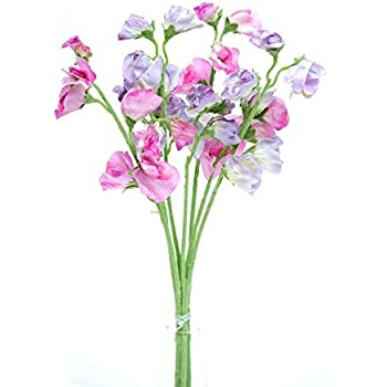 Amazon floristrywarehouse artificial silk sweetpea pink floristrywarehouse artificial silk sweetpea pink lilac stems sweet pea flowers 16 inches mightylinksfo Gallery