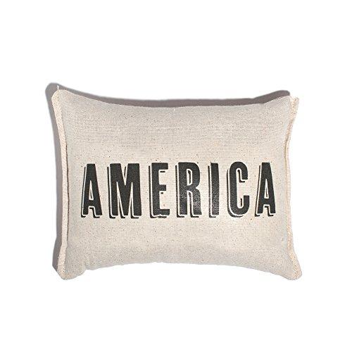 Izola Decorative Balsam Fir Scented Throw Pillow – America