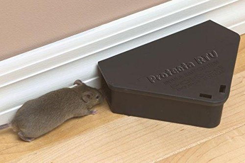 FULL CASE - Protecta RTU mouse Bait station (12 Stations, 2 keys) by ProTecta (Image #2)
