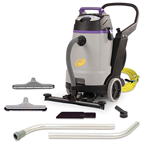 (ProTeam Wet Dry Vacuums, ProGuard 20, 20-Gallon Commercial Wet Dry Vacuum Cleaner with Tool Kit and Front Mount Squeegee)