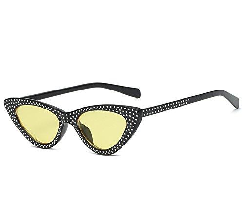 Ablaze-Jin 2018 cat eye sunglasses fashion trends in and America ladies sunglasses wild ()