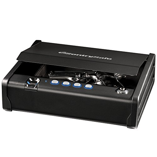 - SentrySafe QAP1BE Gun Safe with Biometric Lock One Handgun Capacity