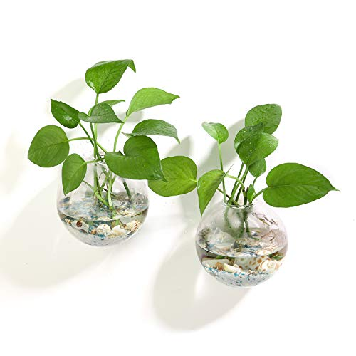 Ivolador Terrarium Container Flower Planter Vase Hanging Glass Home Garden Ball Decor - 12cm - 2PCS]()