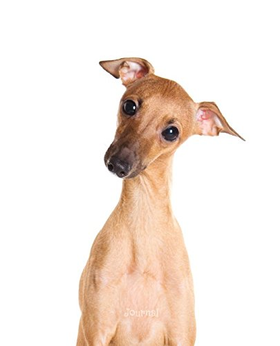 Italian Greyhound Puppies - Journal: Italian Greyhound Puppy (Fawn) Notebook