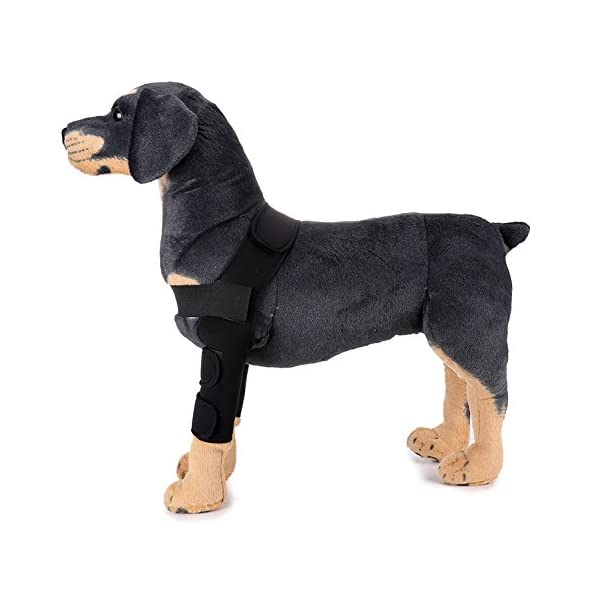 SELMAI Dog Front Leg Brace Support Canine Paw Compression Wrap Shoulder Protects Wounds Brace Extra Supportive Hock… Click on image for further info.