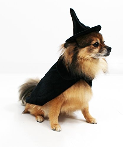 Black Cat Dog Halloween Costume (Halloween Witch Cape and Hat Dog Costume by Midlee (Medium))